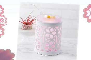 $53 Warmers Scentsy Collection