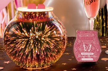 $66 Warmers Scentsy Collection