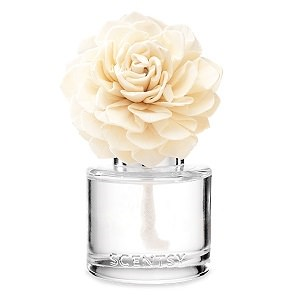 Amazon Rain Scentsy Fragrance Flower