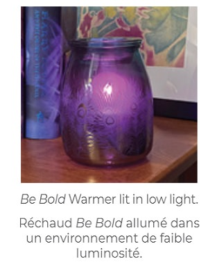 Be Bold Scentsy Warmer - Low Light