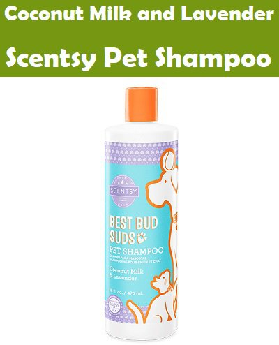 Coconut Milk and Lavender Scentsy Pet Shampoo