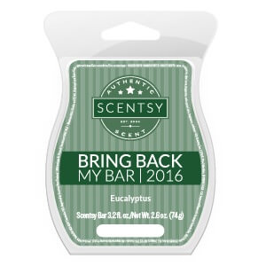 Eucalyptus Scentsy Bar | Bring Back My Bar January 2018