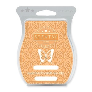 Grapefruit and Grenadine Scentsy Bar