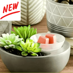 New Scentsy Warmers 2018 Scentsy Canada