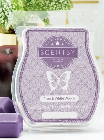 Plum and White Woods Scentsy Bar