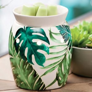 rainforest fern scentsy warmer independent canadian scentsy consultant