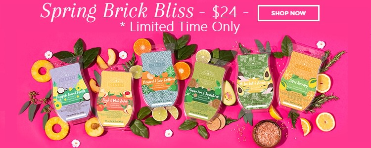 Limited Edition Scentsy Bricks | Click To Buy