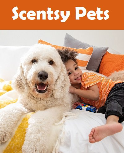 Buy Scentsy Pet Care Products Online