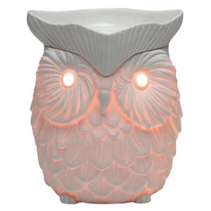 Whoot ( Owl ) Scentsy Warmer